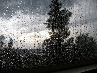 An Ode To The Rain