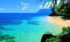 Marine Beauty of Hawaaii