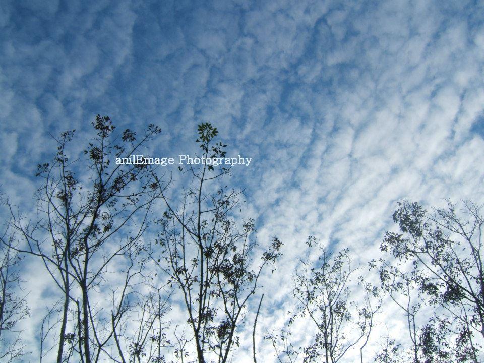 My sky, their sun