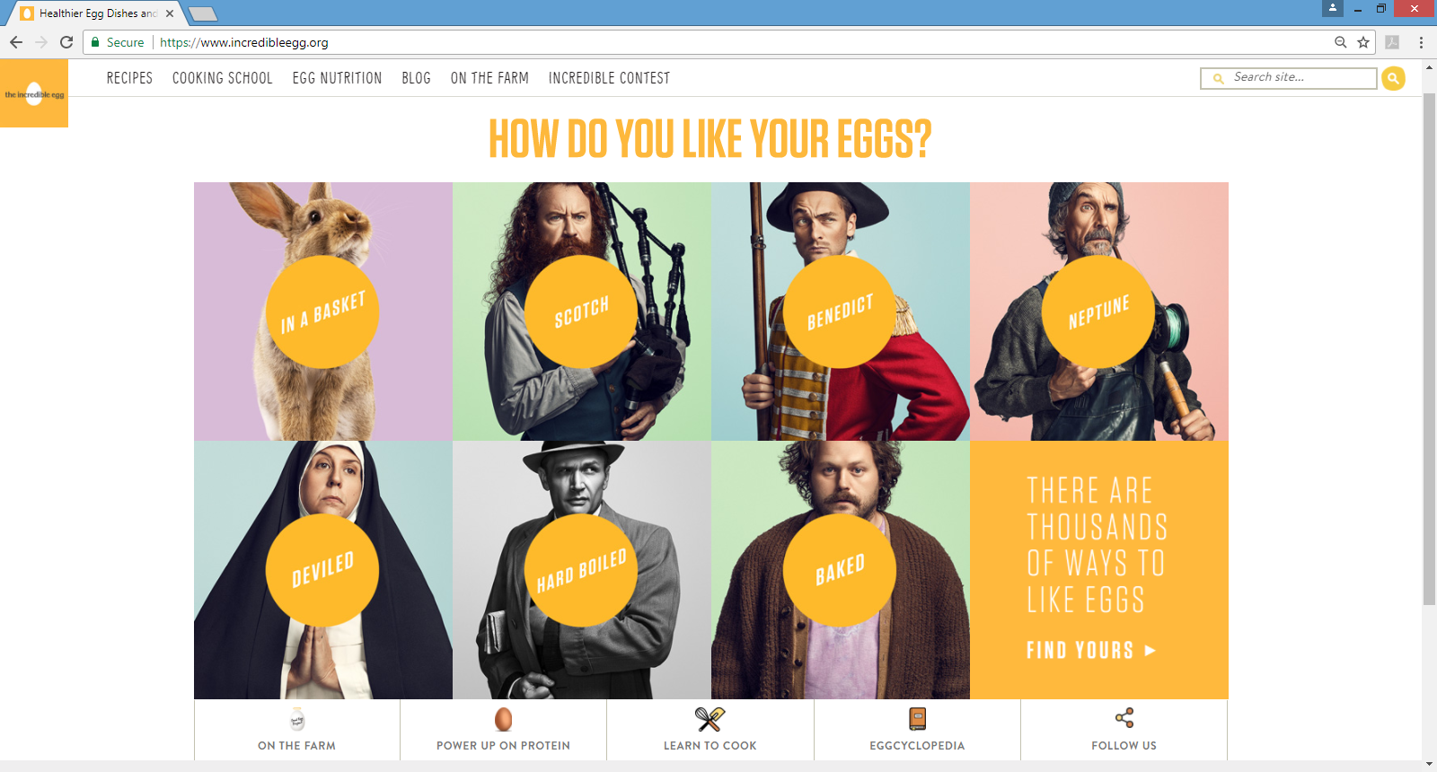 Website Find: The Incredible Egg